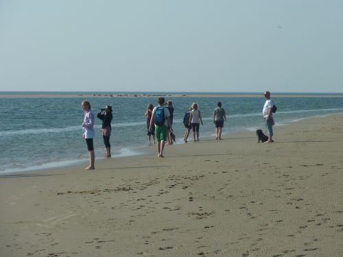 Internationale Wattenmeerschule