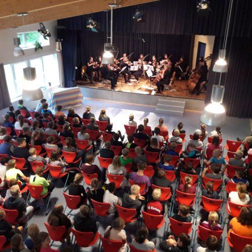 Streichorchester aus Polen, 09