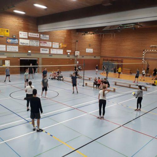 Volleyball19b